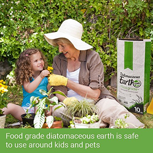 DE Powder - safe for family
