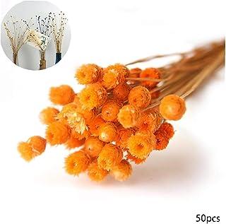 Canjerusof 50pcs / Set Decoración Natural Secas Ramo De Flores Decorativas Flores Secas para El Partido De Boda Fotografía Apoya La Naranja