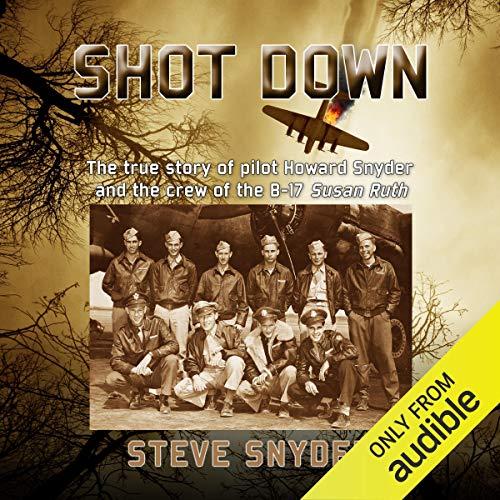 Shot Down Audiobook By Steve Snyder cover art