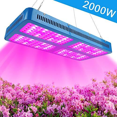 LED Horticole Lampe 2000W...