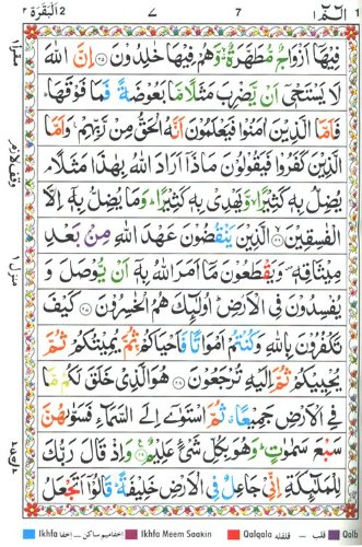 Holy Quran,The (Color Coded Tajweed Rules in English)