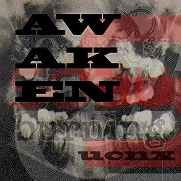 Awaken (Re-Birth Version)