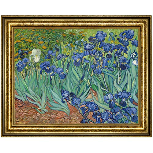 UpperPin Irises by Vincent Van Gogh, Giclee Print Framed Painting on Canvas for Wall Decoration, Gold Frame, Size 31