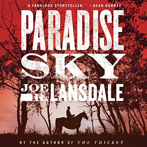 Paradise Sky audiobook cover art