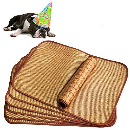 L&Q Fajny materac dla zwierząt domowych, orzeźwiający, oddychający, wygodny, przyjazny dla skóry, niezbędny na lato, daje kotom, psom chłodne lato (113 cm * 80 cm)