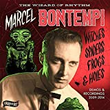 Witches,Spiders,Frogs & Holes [Vinyl LP]
