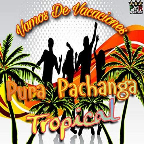 Pura Pachanga Tropical