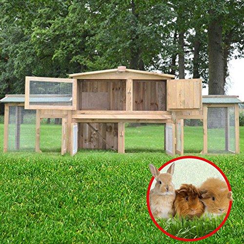 """ZooPrimus Kleintier-Stall Nr 2 XXL Kaninchen-Käfig """"DR. HASE"""" Meerschweinchen-Haus für Außenbereich (Geeignet für Kleintiere: Hasen, Kaninchen, Meerschweinchen usw.) - 2"""