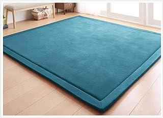 Coral Velvet Area Rugs Play Mat Carpet Crawling Mat for Nursery Baby Toddler Children Kids Room,Yoga Mat Exercise Pads(Blu...