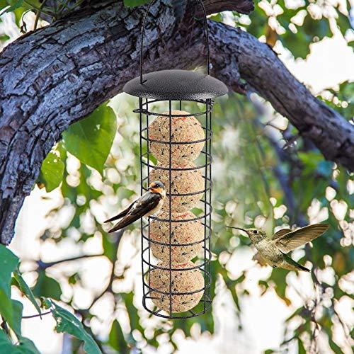 Urbenlife Vogelhuisje, eekhoorntje vaste vogelhuisje, metalen vetbalhouder, automatisch vogelhuisje, gemakkelijk te reinigen en te vullen, perfect voor kleine tuinen of balkons