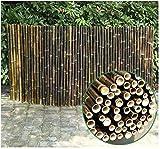 QFLY Cerca de JardínPantalla de privacidad Natural Sin Manchas Durable y...