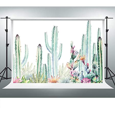 CSFOTO 7x5ft Wooden Board Cactus Backdrop Fiesta Birthday Party Background for Photography Child Adult Fiesta Photo Polyester Background
