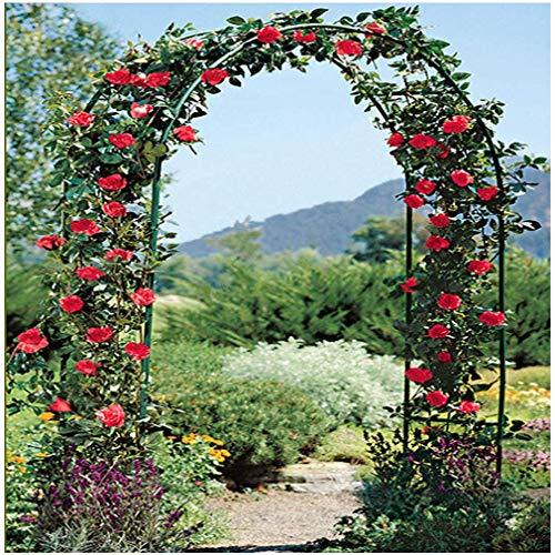 LXLH Arcos de jardín, Arco de jardín de Hierro Forjado, fácil de...