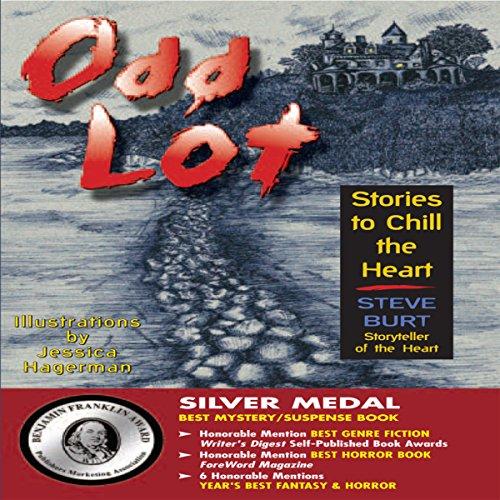 Odd Lot audiobook cover art