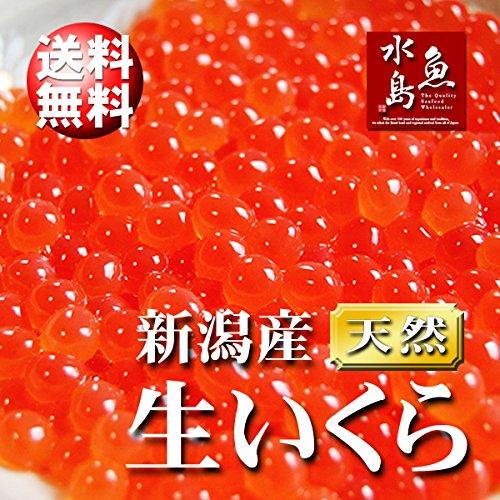 魚水島 新潟産 生いくら 季節限定「とろりやわらか 生イクラ」 2kg