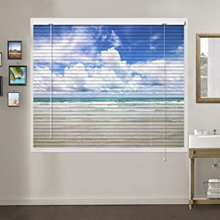 Patterned Aluminium Mini Window Blinds, Premium 1-inch Light Filtering Horizontal Custom Blinds, 20