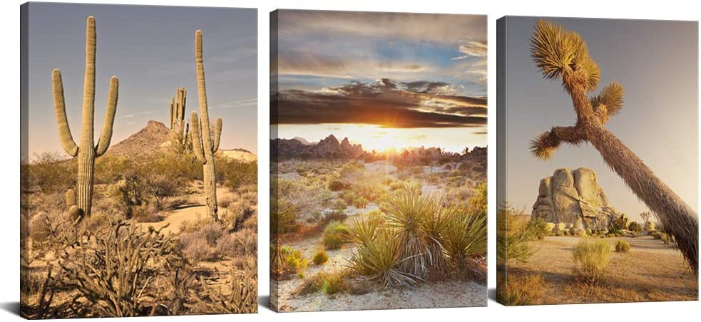 3 PCS Natural Canvas Wall Art Print Joshua Tree National Park Poster Southwest California Desert at Sunset Landscape Picture Painting for Bathroom Bedroom Wall Decoration Framed Ready to Hang 12