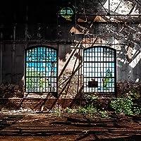 3D写真壁紙レトロ工業風老朽化した窓大きなアート壁画バーレストラン壁画3D 350cmx256cm