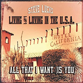 Living and Loving in the USA