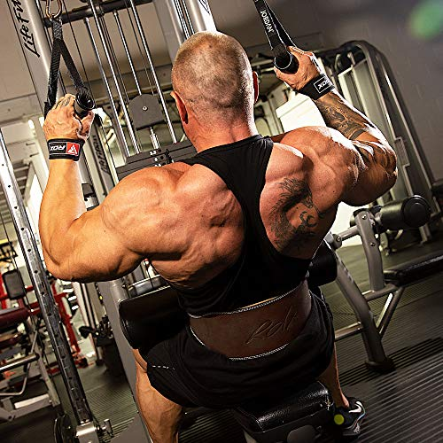RDX Leder Gym Training Gewichthebergürtel Fitness 6″ Gürtel Dreikampfgürtel 2XL - 3