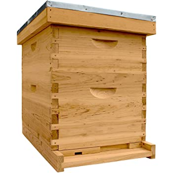 Beehive complete with frames 3 Medium Hive Bodies Free Shipping