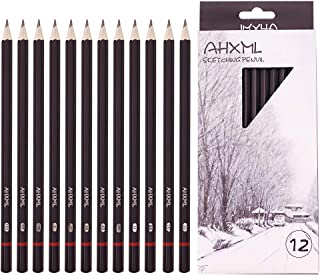 Professional Drawing Sketch Pencils Set, 12 Pieces Drawing Pencils, 8B,7B, 6B, 5B, 4B, 3B, 2B, B, HB, F, H, 2H Graphite Pe...