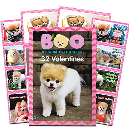 Boo The World's Cutest Dog 32 Valentines Classroom Exchange Cards