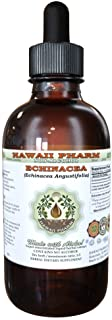 Echinacea Alcohol-Free Liquid Extract, Echinacea (Echinacea Angustifolia) Dried Root Glycerite Hawaii Pharm Natural Herbal...