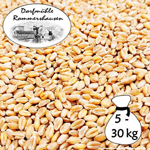 Petigi 5-30 kg Weizen Gereinigt Hühnerfutter Geflügelfutter Futterweizen Vogelfutter Ernte 2020, Gewicht:25 kg