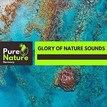 Glory of Nature Sounds