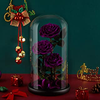 Preserved Real Rose Handmade Eternal Rose in Glass Doom Gifts for Her Valentine`s Day Mother`s Day Anniversary Birthday (3 Purple Rose)