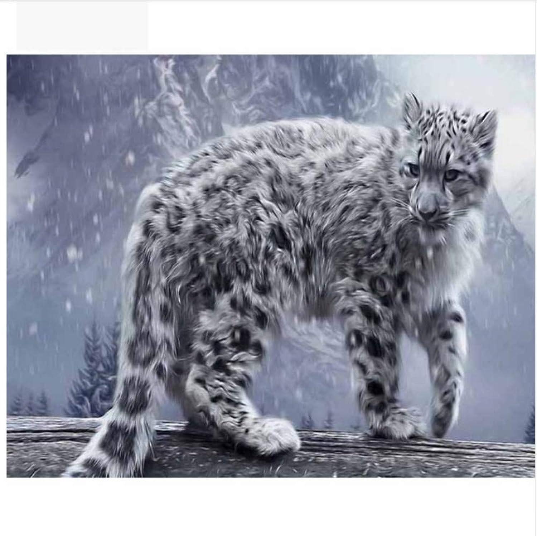 WFYY Malen Nach Zahlen Erwachsene Leopard Im Schnee Leinwand Wandkunst Foto Puzzle Spiel Spielzeug Geschenke Für Kinder 16X20 Inch Holzrahmen B07PQT5N6Z   Neuer Eintrag
