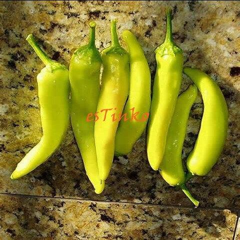 1 paquet hongrois Graines de cire jaune poivre, jaune Paprika, Super Hot Chilli, graines de légumes, jardin Bonsai plantes