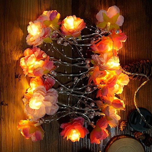 ANZOME LED Lichterkette, 2.4m 20LED Warmweiß Blumen Lichterkette, Romantisch Deko für Hochzeit Party - Geschenk - Tischdeko - Balkon - Schlafzimmer - Batteriebetrieben(Batterie nicht enthalten)