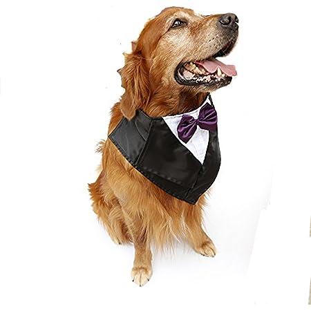 hand made . custom fit cat clothing dog  attire pet wear Black Cat Tuxedo formal wear wedding attire pet tuxedo