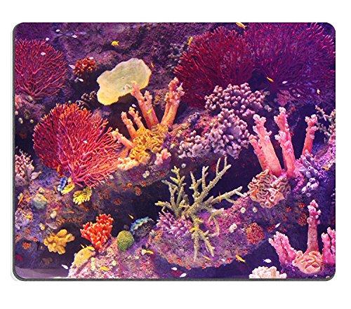 luxlady Naturkautschuk Mousepads Bild-ID 21034193Big Aquarium mit Schöne exotische Fische und Marine Pflanzen Antalya Aquarium in der Türkei