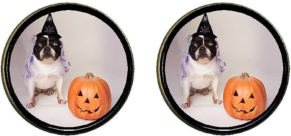 GiftJewelryShop Bronze Retro Style bulldog witch costume Halloween pumpkin Photo Clip On Earrings #14