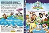 Baby Looney Tunes: Olimpiadas en el parque [DVD]