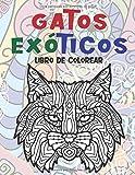 Gatos exóticos - Libro de colorear