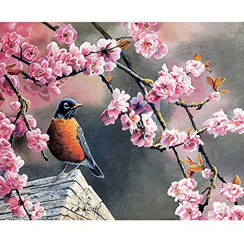 ERTQA Pintura al óleo de Bricolaje, Pintura por número Ciruela de Aves Pintura de Lienzo Adultos y Dibujo Principiante 40x50cm