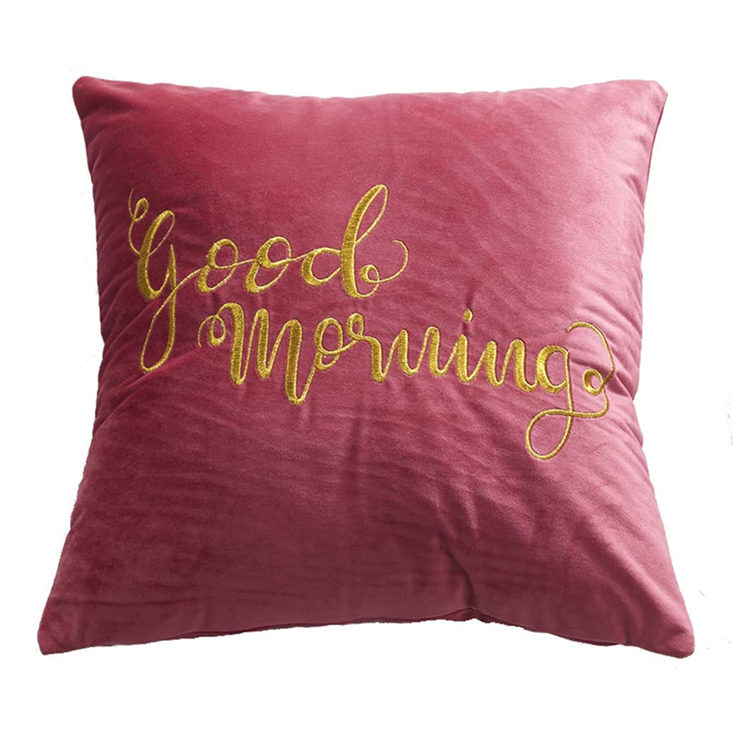 Alixyz Fashion Simple Dutch Velvet Embroidery Pillow Pillow Cushion Cover Coffee Shop Home Decoration Cushion Cover (M, Red)