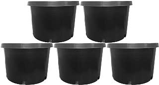 10 gallon pot size