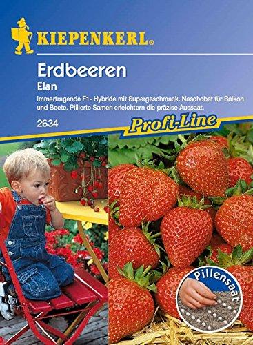 Kiepenkerl, Erdbeere Elan pillierte Saat