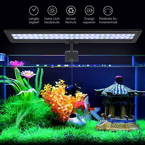 Koopower 45 LED Aquarium Beleuchtung, hellste LED Fisch Clip Aquarium Lampe, Verstellbarer Halterung für 30cm-45cm Aquarium (Weiß & Blau Licht)