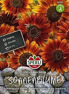 Suchergebnis Auf Amazon De Fur Tom Garten Blumen Blumen Pflanzen Garten