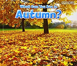 What can you see in autumn. Autumn Themed Books for Preschoolers and children.