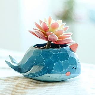 Messagee Creative Kawaii Whale Resin Flower Pot Planter Garden Bonsai Succulent Plants Desk Flower Pot