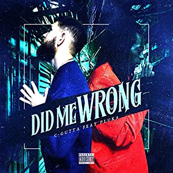 Did Me Wrong (feat. Pluka)