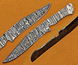 10.75 inches Long Kukri Point Blank Blade, Hand Forged Ladder Pattern Damascus Steel Hunting Knife Blade, Knife Making Supplies, 3 Pin Hole Scale, 6' Sharp Cutting Edge