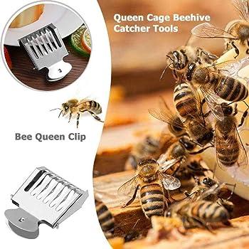 1 Pc Stainless Steel Clip Bee Cage Beehive Honey Beekeeping Queen cage Queen Bee Catcher Beekeeping tools